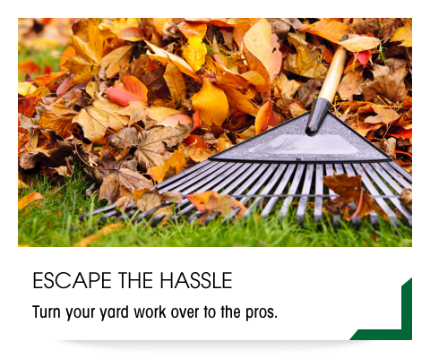 Escape the Hassle | Turn your yard work over to the pros.